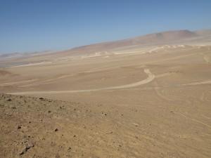 reserva natural de paracas