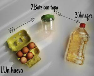 experimento huevo
